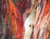 Kusový koberec RUST 80 x 150 cm červený