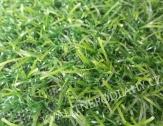 Umělý travní koberec Irene 20mm