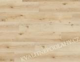 Wineo DESIGNline 400 Wood XL CLICK Luck Oak Sandy DLC00127 MNOŽSTEVNÍ SLEVY a ZDARMA LIŠTA